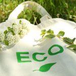 レジ袋有料化に向けて エコでおしゃれなマイバックを作ろう