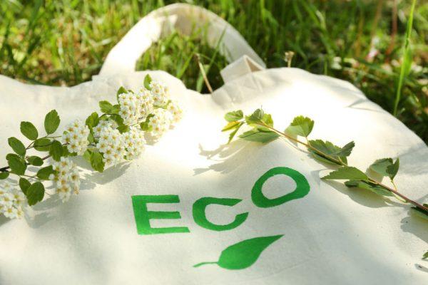 レジ袋有料化に向けて エコでおしゃれなマイバッグを作ろう